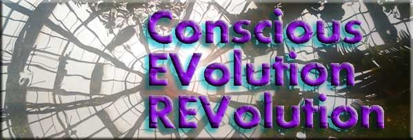 Conscious Evolution Revolution